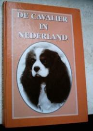 De Cavalier in Nederland - Bas Bosch