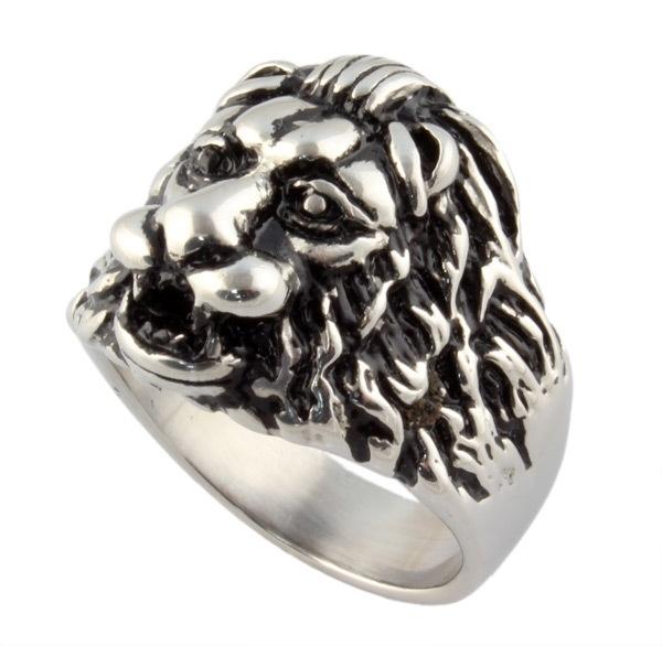 Dutch lion - Nederlandse leeuw