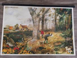 Vintage aquarel schoolplaat 'Plant en dier in de herfst!' - jaren 70