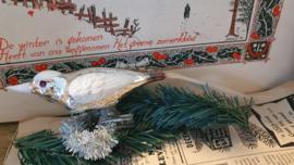 Prachtige grote vogel met witte deco en lange staart. Op clip