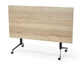 Verrijdbare klaptafel 160x80cm