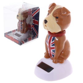 Engelse Bulldog solar pal