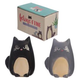 Feline fine kat peper