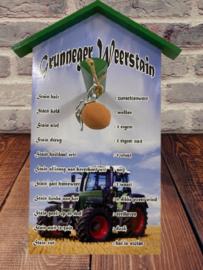 Grunneger weersteen Fendt tractor