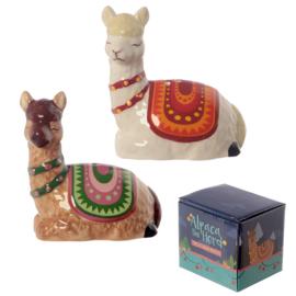 Alpaca peper en zoutstel
