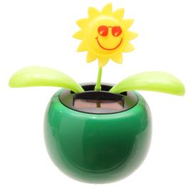 Zonnebloem solar pal Groen