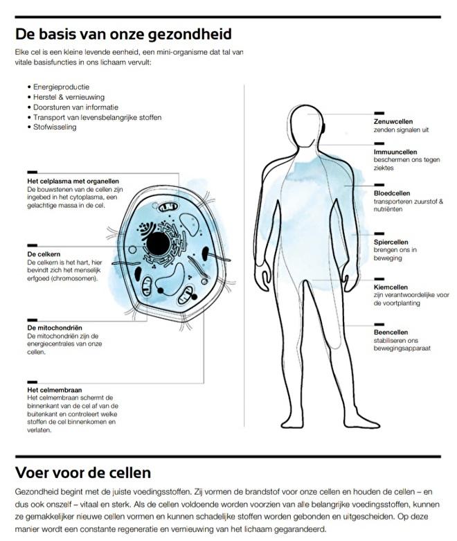 LR Health & Beauty - Celverzorging