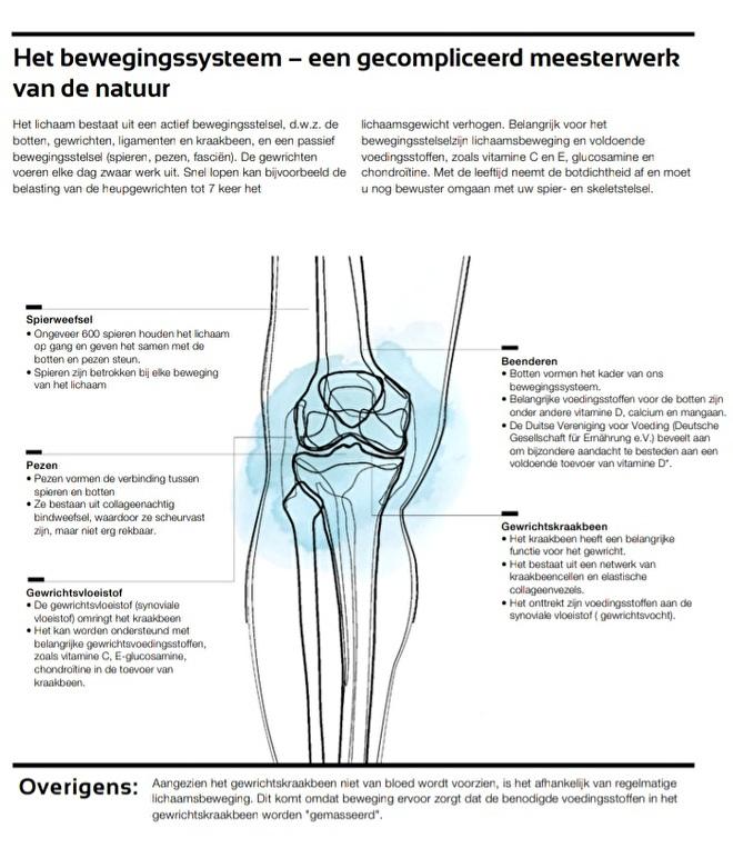 LR Health & Beauty - Botten, gewrichten en spieren