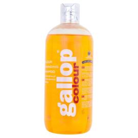 Carr & Day & Martin shampoo Gallop Colour Chestnut 500 ml