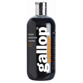 Carr & Day & Martin shampoo Gallop Colour Black 500 ml
