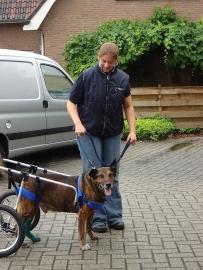 Consult aan huis in Coevorden
