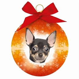 Kerstbal rond chihuahua