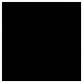 Zwart 16910