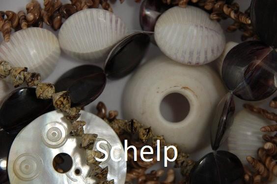 schelp.1.jpg