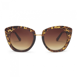 Charly therapy Julieta tortoise