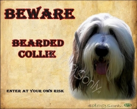 Waakbord Bearded Collie (Engels). OP=OP
