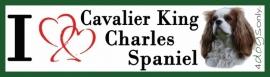 I LOVE Cavelier King Charles Spaniel OP=OP