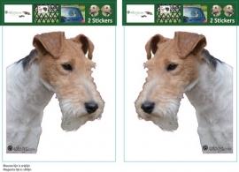 Wire Fox Terrier setje 2 stuks