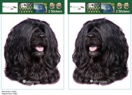 Portugese Water hond zwart  /     Portuguese Water Dog black setje 2 stuks OP=OP