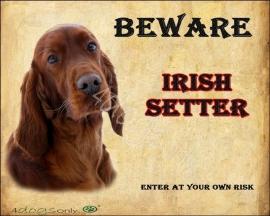 Waakbord Ierse Setter / Irish Setter (Engels). OP=OP