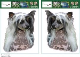 Chinese Crested Dog wit setje 2 stuks OP=OP
