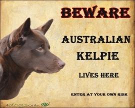 Waakbord Australian Kelpie. OP=OP