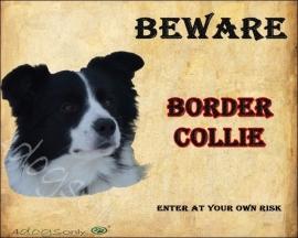 Waakbord Border Collie Zwart / Wit Engels. OP=OP