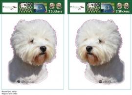 West Highland White Terrier setje 2 stuks