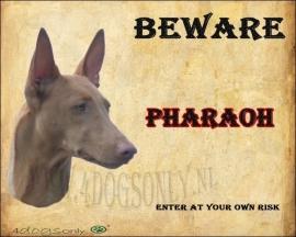 Waakbord Pharaoh nr 2. OP=OP