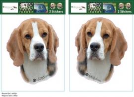 Beagle setje 2 stuks OP=OP