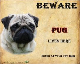Waakbord Mops hond / Pug (Engels)