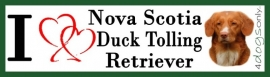I LOVE Nova Scotia Duck Tolling Retriever OP=OP