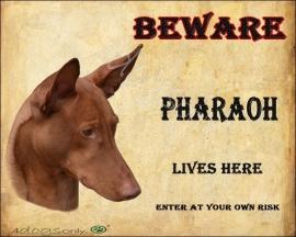 Waakbord Pharaoh. Per set van 2 waakborden UITVERKOCHT