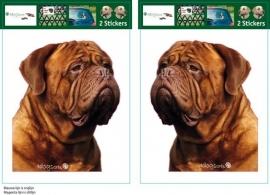Bordeaux Dog / Dogue de Bordeaux setje 2 stuks OP=OP