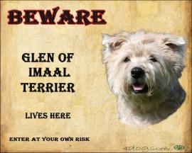 Waakbord Glen of Imaal Terrier.  OP=OP