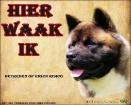 Waakbord American Akita (Nederlands) 01. OP=OP
