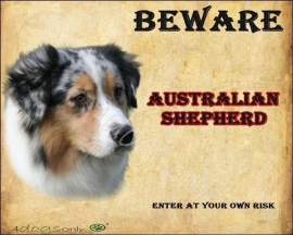 Waakbord Australian Shepherd Blue Merle  engels 01 UITVERKOCHT