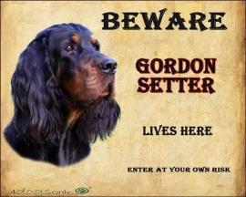 Waakbord Gordon Setter (Engels) OP=OP