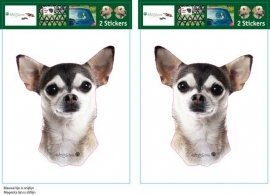 Chihuahua Husky kleur setje 2 stuks OP=OP