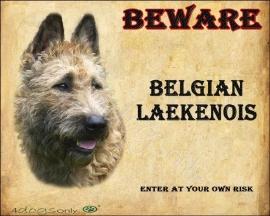 Waakbord Belgian Laekenois / Laekense Herder (Engels). UITVERKOCHT