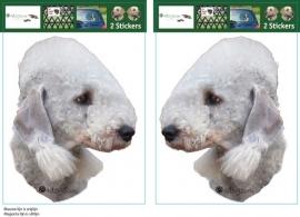 Bedlington Terrier setje 2 stuks OP=OP