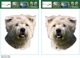 Glen of Imaal Terrier setje 2 stuks OP=OP