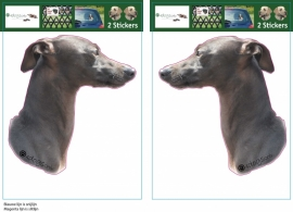 Italian Greyhound / Italiaans windhondje setje 2 stuks OP=OP