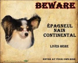 Waakbord Epagnuel Nain Continental / Vlinder hondje (Engels) UITVERKOCHT