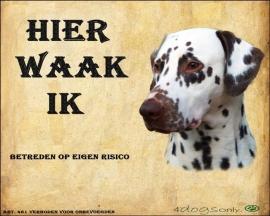 Waakbord Dalmatiër Bruin (01)