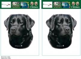 Labrador Zwart setje 2 stuks UITVERKOCHT