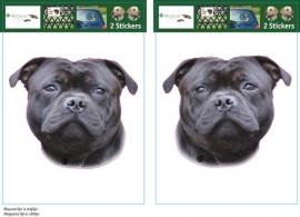 Engelse Staffordshire Bull Terrier Zwart setje 2 stuks OP=OP