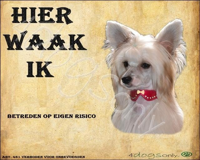 Waakbord Chinese Crested - Powderpuff (Nederlands) (01) OP=OP