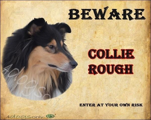 Waakbord Collie Rough Tricoloure (Engels) Per set van 2 waakborden UITVERKOCHT