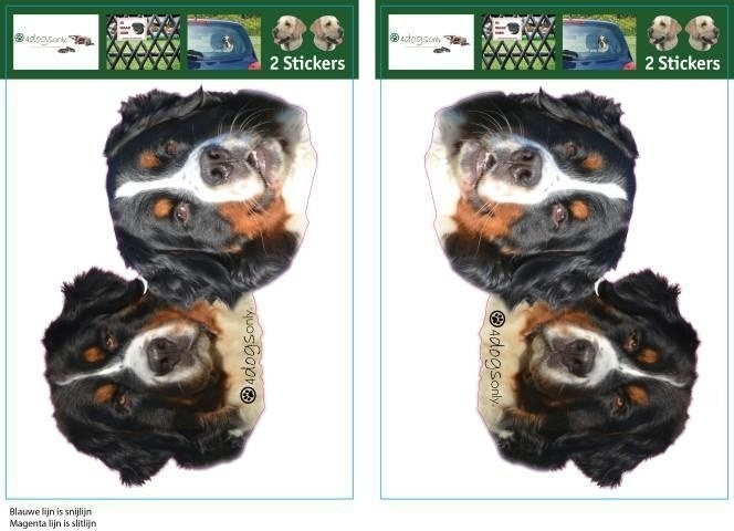 Berner Senner dubbel sticker set setje 2 stuks